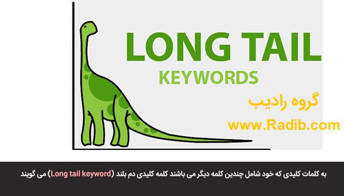 کلمه کلیدی دم بلند (Long tail keyword)